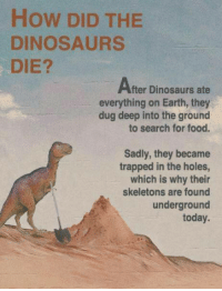 Food, Memes, and Holes: How DID THE  DINOSAURS  DIE?  After Dinosaurs ate  everything on Earth, they  dug deep into the ground  to search for food.  Sadly, they became  trapped in the holes,  which is why their  skeletons are found  underground  today.