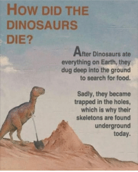 Food, Memes, and Holes: HOW DID THE  DINOSAURS  DIE?  Alter Dinosaurs ate  everything on Earth, they  dug deep into the ground  to search for food  Sadly, they became  trapped in the holes,  which is why their  skeletons are found  underground  today It all makes sense now
