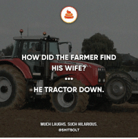 Memes, Ferguson, and Jokes: HOW DID THE FARMER FIND  HIS WIFE?  MASSEY FERGUSON  HE TRACTOR DOWN.  MUCH LAUGHS. SUCH HILARIOUS.  @SHITBOLT — Creds: -r-jokes