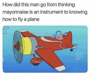 Dank, Memes, and Target: How did this man go from thinking  mayonnaise is an instrument to knowing  how to fly a plane meirl by Kamilokk MORE MEMES