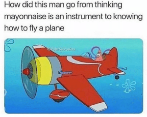 Instagram, Memes, and Best: How did this man go from thinking  mayonnaise is an instrument to knowing  how to fly a plane My new favorite page is @irealizeposts 🤯 they post the best memes on instagram @irealizeposts 🤪😂