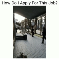 Funny, Lmao, and How: How Do I Apply For This Job? Lmao please tell me 😂