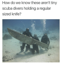 the person taking the picture must be huge though @dabmoms: How do we know these aren't tiny  scuba divers holding a regular  sized knife? the person taking the picture must be huge though @dabmoms