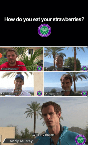 Roger, Stan, and Target: How do you eat your strawberries?  AMPI  MBLE  With cream  With cream  Stan Wawrinka  Li Na  With crean  With cream  フ  Θ  Novak Djokovic  Roger Federer  With my fingers  Andy Murray potter-who-lock:  Andy you had one job