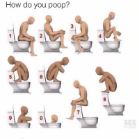 Comfortable, Memes, and Poop: How do you poop?  2  4  5  6  8  SEE  MORE I'm a 0 , or a 7. Depends on how comfortable I am🙈💩 Tag a friend Follow us @laugh.r.us