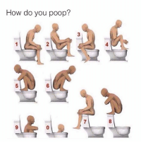 Memes, Poop, and 🤖: How do you poop?  4  5  6  8  9 This should be interesting 😏😏😏 {0 for me} . . krakstv