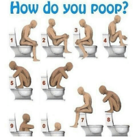 @yourdadsatonmyface says 0, I gotta go with 8: How do you poop? @yourdadsatonmyface says 0, I gotta go with 8