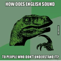 Velociraptor: HOW DOES ENGLISH SOUND  TO PEOPLE WHODONTUNDERSTANDITO  MEMEFUL COM
