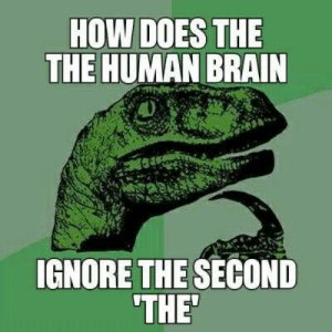 Brain, How, and Human: HOW DOES THE  THE HUMAN BRAIN  IGNORE THE SECOND  THE *hits blunt*