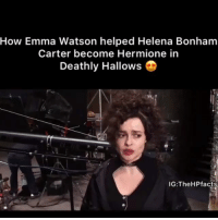 Emma Watson, Friends, and Hermione: How Emma Watson helped Helena Bonham  Carter become Hermione in  Deathly Hallows  IG:TheHPfacts Woah Woah 😍🙄 I'm close to 80k btw?!? 😘 Thanks 💕 QOTD: What are the some of the best things you've watched on Netflix? Well, I started Teen Wolf yesterday and I'm already liking it. So, what about you? Comment below. 👇🏼 ... Follow us 👉(@harrypotterfacts)!👈 🙌🙏 Tag someone who would love this! 😍 Don't forget to follow us on (@harrypotteredits) for more posts like this! 😱 Tag your friends below!👇👇 ©HarryPotterFacts HarryPotterFacts ⚠No ©Copyright Infringement Intended, All rights to J.K. Rowling and Warner Bros. ®