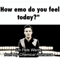 """Me everyday: How emo do you feel  today?""""  m Pete Wentz  from MM y Chemical Romance Me everyday"""