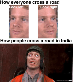 being an Indian, i can agree with this: How everyone cross a road  Look left  Look right  How people cross a road in India being an Indian, i can agree with this