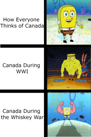 Another Canada Meme: How Everyone  Thinks of Canada  Canada During  wWI  KOO  Canada During  the Whiskey War Another Canada Meme