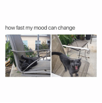Mood, True, and Girl Memes: how fast my mood can change true