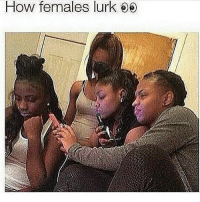 Memes, 🤖, and How: How females lurk