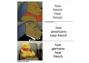 *surrenders in french*: how  french  hear  french  spooryscere  how  americans  hear french  how  germans  hear  french  made you look *surrenders in french*