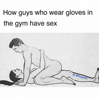 Gym, Sex, and Sleep: How guys who wear gloves in  the gym have sex  0 ethegainz 10 sec nut & sleep soft mf 🐸☕️ @thegainz