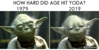 Yoda: HOW HARD DID AGE HIT YODA?  1979  2019  @markwilliamphoto