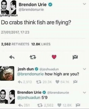 How high are you? by penetratorr MORE MEMES: How high are you? by penetratorr MORE MEMES