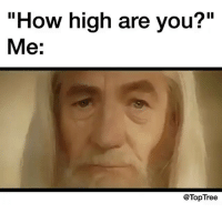 """@toptree has the best posts 🤣🤣: """"How high are you?""""  Me:  @Top Tree @toptree has the best posts 🤣🤣"""