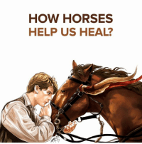 HOW HORSES  HELP US HEAL? Horses help us heal...Emotional & Spiritually. The Peace Ponies Domino & Puzzle