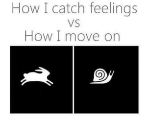 How, Move, and Feels: How I catch feelings  VS  How I move on Catching feels