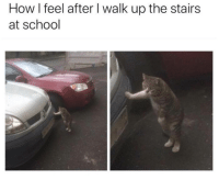 School, How, and Feel: How I feel after I walk up the stairs  at school