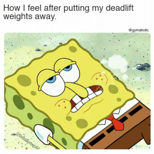 How I feel after putting my deadlift weights away.  More motivation: https://www.gymaholic.co  #fitness #motivation #gymaholic: How I feel after putting my deadlift  weights away.  @gymaholic How I feel after putting my deadlift weights away.  More motivation: https://www.gymaholic.co  #fitness #motivation #gymaholic