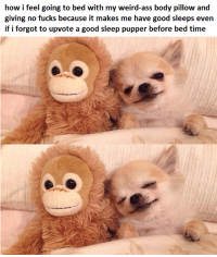 Ass, Weird, and Good: how i feel going to bed with my weird-ass body pillow and  giving no fucks because it makes me have good sleeps even  if i forgot to upvote a good sleep pupper before bed time me irl