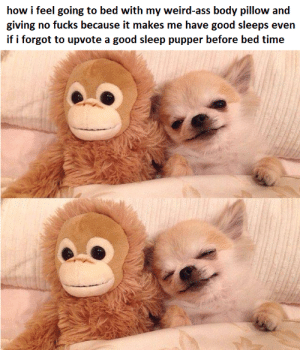 Ass, Dank, and Memes: how i feel going to bed with my weird-ass body pillow and  giving no fucks because it makes me have good sleeps even  if i forgot to upvote a good sleep pupper before bed time me irl by Materia_Girl FOLLOW HERE 4 MORE MEMES.