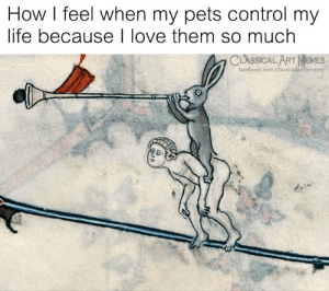 how i feel when: How I feel when my pets control my  life because I love them so much  CLASSICAL ART MEMES  facebook.com/classicalartimemes
