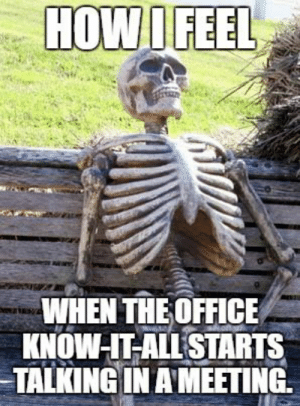 Memes, The Office, and Office: HOW I FEEL  WHEN THE OFFICE  KNOW IT ALLSTARTS  TALKING IN AMEETING. 33 Memes for People Who Can't Stand Know-It-Alls