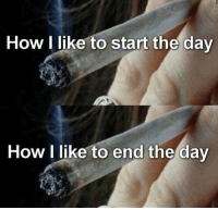 Weed, Dollar Store, and Marijuana: How I like to start the day  How I like to end the day If you're purchasing a Dollar Store pregnancy test, I think we both know you can't afford a positive. highthoughts