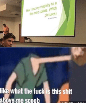 danktoday: Kinda wanna see that presentation ngl by EliTheAwesome13  MORE MEMES : How I lost my virginity to a  thin mint cookie. (With  pictures  like what the fuck is this shit  made with mematic  IAGE danktoday: Kinda wanna see that presentation ngl by EliTheAwesome13  MORE MEMES