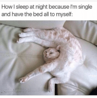 Comfy as fuck 😊 Follow the hilarious @cutebutcrazy___ @cutebutcrazy___ @cutebutcrazy___ @cutebutcrazy___: How I sleep at night because l'm single  and have the bed all to myself: Comfy as fuck 😊 Follow the hilarious @cutebutcrazy___ @cutebutcrazy___ @cutebutcrazy___ @cutebutcrazy___