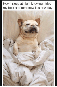 "Best, Tomorrow, and Amazing: How I sleep at night knowing I tried  my best and tomorrow is a new day <p>You're amazing via /r/wholesomememes <a href=""https://ift.tt/2HyBhyn"">https://ift.tt/2HyBhyn</a></p>"