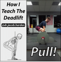 Food, Gym, and Life: How  I  The  Teach Deadlift  @drjacob harden  Pull! YOUR DEADLIFT TECHNIQUE CHECKLIST It looks quite simple to go and rip some weight off the floor, but there is actually quite a technical aspects to picking things up and putting them down.🏋 . Learning to deadlift is one of the best things you will ever do for your body. And EVERYONE needs to know how. Not just to go to the gym but to pick up that bag of dog food, or your grandchild, or move your couch. Real life 💩 s***. . 📽 This is how I teach a beginner to deadlift. As you get more skilled, you can combine steps like hinging and breaking at the knees at the same time or bracing and locking the lats at the top rather than just before the pull. You'll find your perfect pull over time, but start here and make sure you have the fundamentals down. . Here's the entire checklist for you to run through: . ✔Set up close to bar. Sumo will be closer than conventional so you don't roll the bar. ✔Hinge at the hips until the hamstrings go on stretch. ✔Maintain spinal position and bend the knees to reach the bar. If you are pulling sumo, also push the knees out as you bend. ✔Grip tight. ✔Brace your core and take a big breath into your stomach. ✔Pull all slack out of the bar as you lock the lats and get your armpits over the bar. ✔PULL!!! ✔Finish by pushing the hips through and squeezing the glutes, not by hyperextending the spine. ✔Put it down the same way. Hinge until you are past the knees and then bend the knees to reach the ground. . Tag a friend and GO GET STRONG! MyodetoxOrlando Myodetox FutureproofYourBody