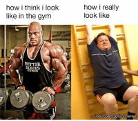 Gym: how i think i look  like in the gym  BOOTCAMP  BETTER  ISSUE  how i really  look like  ironic czech politics memes