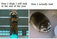 Memes, New Year's, and Fuck: How I think I will look  at the end of the year  How I actually look fuck new year resolution via /r/memes http://bit.ly/2BLyQpE