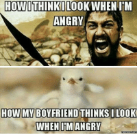 Angry Memes: HOW I WHEN IM  ANGRY  HOW IMM BOYFRIEND THINKS ILOOK  WHEN IM ANGRY  Memes Come
