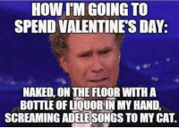 valentines day memes: HOW IM GOING TO  SPEND VALENTINES DAY:  NAKED, ON THE FLOOR WITH A  BOTTLE OF LIQUOR IN MY HAND,  SCREAMING ADELESONGS TO MYCAT.