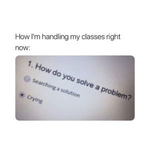 Crying, How, and You: How I'm handling my classes right  now  1. How do you solve a problem?  Searching a solution  .Crying Pretty much 😅