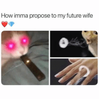 Would juul be my wife? 😍😍 @grapejuiceboys: How imma propose to my future wife Would juul be my wife? 😍😍 @grapejuiceboys