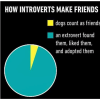 Dank Memes, Them, and Make: HOW INTROVERTS MAKE FRIENDS  dogs count as friends  an extrovert found  them, liked them,  and adopted them Accurate