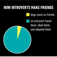 Memes, 🤖, and Extrovert: HOW INTROVERTS MAKE FRIENDS  dogs count as friends  an extrovert found  them, liked them,  and adopted them True shit.