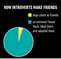 Memes, 🤖, and Extrovert: HOW INTROVERTS MAKE FRIENDS  dogs count as friends  an extrovert found  them, liked them,  and adopted them
