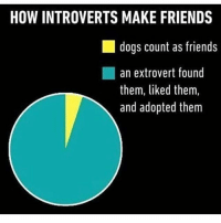 I'm the extrovert who adopts the introverts😂 I think I might get to 10k today! A week ahead of the goal! lol hilarious cleanaccount cleanmemes hahaha cleanfunnyme: HOW INTROVERTS MAKE FRIENDS  dogs count as friends  an extrovert found  them, liked them,  and adopted them I'm the extrovert who adopts the introverts😂 I think I might get to 10k today! A week ahead of the goal! lol hilarious cleanaccount cleanmemes hahaha cleanfunnyme