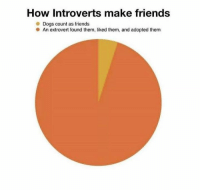 Dank, Dogs, and Friends: How Introverts make friends  Dogs count as friends  An extrovert found them, liked them, and adopted them Very true
