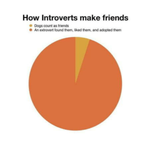 Dogs, Friends, and How: How Introverts make friends  Dogs count as friends  An extrovert found them, liked them, and adopted them Pretty darn accurate
