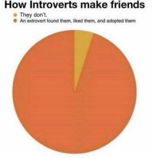 Friends, How, and Them: How Introverts make friends  They don't.  An extrovert found them, liked them, and adopted them Extrovert, adopt me!!